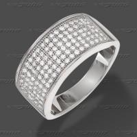 65-0011 -AKTION- SRh Ring