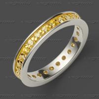 72-0032-5 SGW Ring