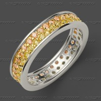 72-0032-55 SGW Ring