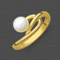 72-0412 GG 333 Ring 9,5mm